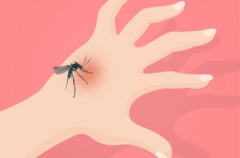 Malaria-01